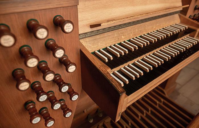 Orgle